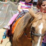At Binme Yaz Okulu Küçükçekmece Sefaköy Cennet Tepeüstü Mahallesi Tatlı Çocuklar Anaokulu Kreş Yuva