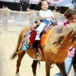 Yaz Okulu Ata Binme Gezi Küçükçekmece Sefaköy Cennet Tepeüstü Mahallesi Tatlı Çocuklar Anaokulu Kreş Yuva